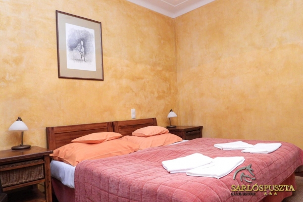 szoba-lovas05DDA45793-A45A-7903-C1C5-9F2164B7E769.jpg