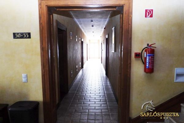 szoba-lovas095E226DE3-86A2-BF0A-1E1B-ACDCDE3DB0C6.jpg
